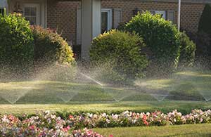 Make sure that you don't have any sprinkler leaks or blockages